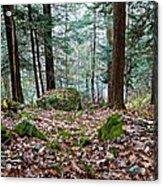 Green Woodland Beauty Acrylic Print
