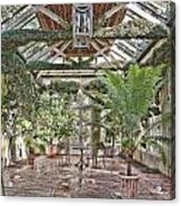 Greenhouse Splendor Acrylic Print
