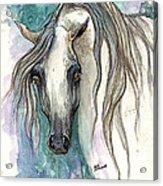 Grey Arabian Horse 2013 11 26 Acrylic Print