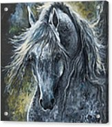 Grey Arabian Horse Oil Painting 2 Acrylic Print