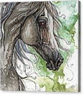Grey Arabian Horse Watercolor Painting 1 Acrylic Print