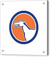 Greyhound Dog Head Side Retro Circle Acrylic Print