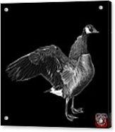 Greyscale Canada Goose Pop Art - 7585 - Bb  Acrylic Print