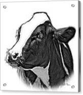 Greyscale Cow Holstein - 0034 Fs Acrylic Print