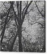 Grief 2 Acrylic Print