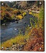 1012a Grimes Creek Boise Id Acrylic Print