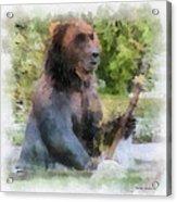 Grizzly Bear Photo Art 01 Acrylic Print
