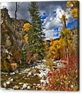 Grizzly Creek Vertical Acrylic Print