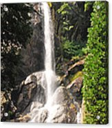 Grizzly Falls Acrylic Print