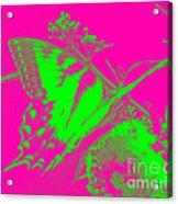 Groovy Butterfly Acrylic Print