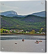 Gros Morne Mountain Over Bonne Bay At Norris Point In Gros Morne Np-nl Acrylic Print