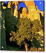 Grosvenor Arch At Sunset Acrylic Print