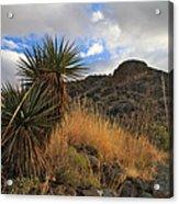 Grosvenor Hill Arizona Acrylic Print