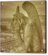Grotesque From Notre Dame Acrylic Print