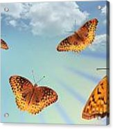 Group Of Butterflies And Sky Acrylic Print