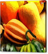 Group Of Gourds Acrylic Print