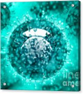 Group Of H5n1 Virus With Glassy View Acrylic Print