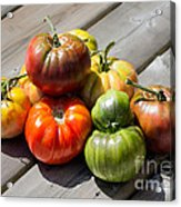Grown From Seeds Acrylic Print