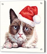 Grumpy Cat As Santa Acrylic Print by Olga Shvartsur