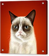 Grumpy Cat Acrylic Print