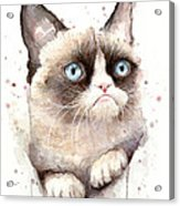 Grumpy Cat Watercolor Acrylic Print