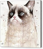 Grumpy Watercolor Cat Acrylic Print