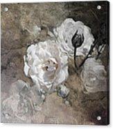 Grunge White Rose Acrylic Print