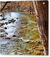 Guadalupe River View Acrylic Print