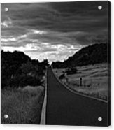 Guanica Dry Forest B W 1 Acrylic Print