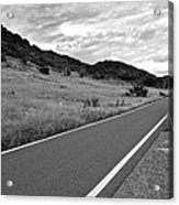 Guanica Dry Forest B W 2 Acrylic Print