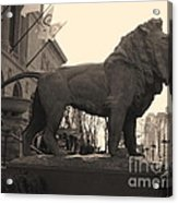 Guarded Lion Statue In Chicago Acrylic Print