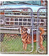 Guarding The Ford Acrylic Print