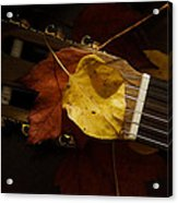 Guitar Autumn 4 Acrylic Print