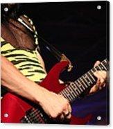 Guitar Acrylic Print by James Hammen