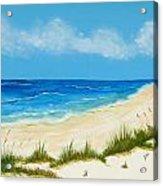 Gulf Coast IIi Acrylic Print