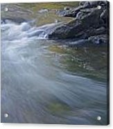 Gull River In Fall Acrylic Print