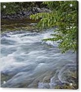 Gull River Rapids Acrylic Print
