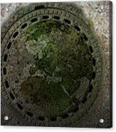 Gulli Verde I Acrylic Print