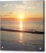 Gulls Dance In The Warmth Of The New Day Acrylic Print
