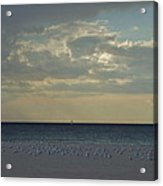 Gulls Waiting For The Storm Acrylic Print