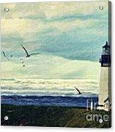 Gulls Way Acrylic Print by Lianne Schneider