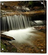 Gurgling Over A Small Log Acrylic Print