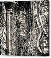Gutter Pipe Acrylic Print