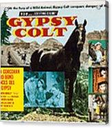 Gypsy Colt, Us Lobbycard, Center Acrylic Print