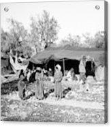 Gyspy Encampment, C1900 Acrylic Print
