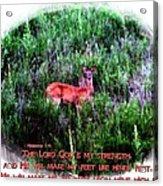 Habakkuk 3 19 Acrylic Print