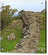 Hadrian's Wall Near Walltown Quarry Acrylic Print