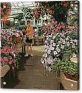 Haefner's Garden Center Impatiens Acrylic Print