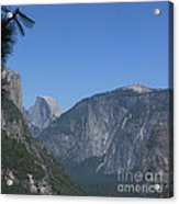 Half Dome In Distance Acrylic Print