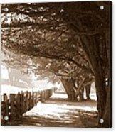 Half Moon Bay Pathway Acrylic Print